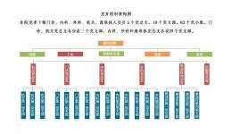 党务组织架构图